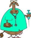 Homéopathie vétérinaire