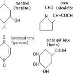 Pharmacopée végétale