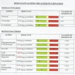 Métabolites organiques urinaires