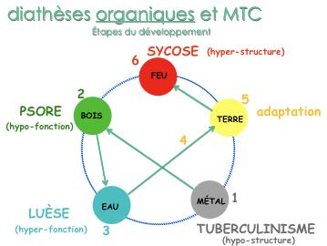 DiathèsesOrganiques