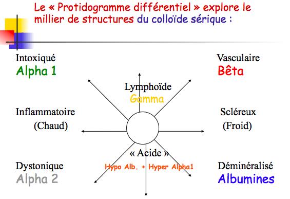 LeProtidogrammeDifférentiel