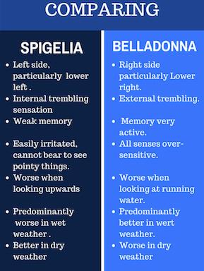 spigbell